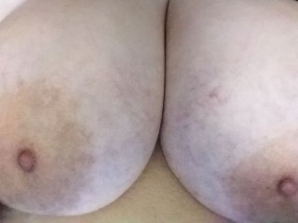 Exotic_Melons